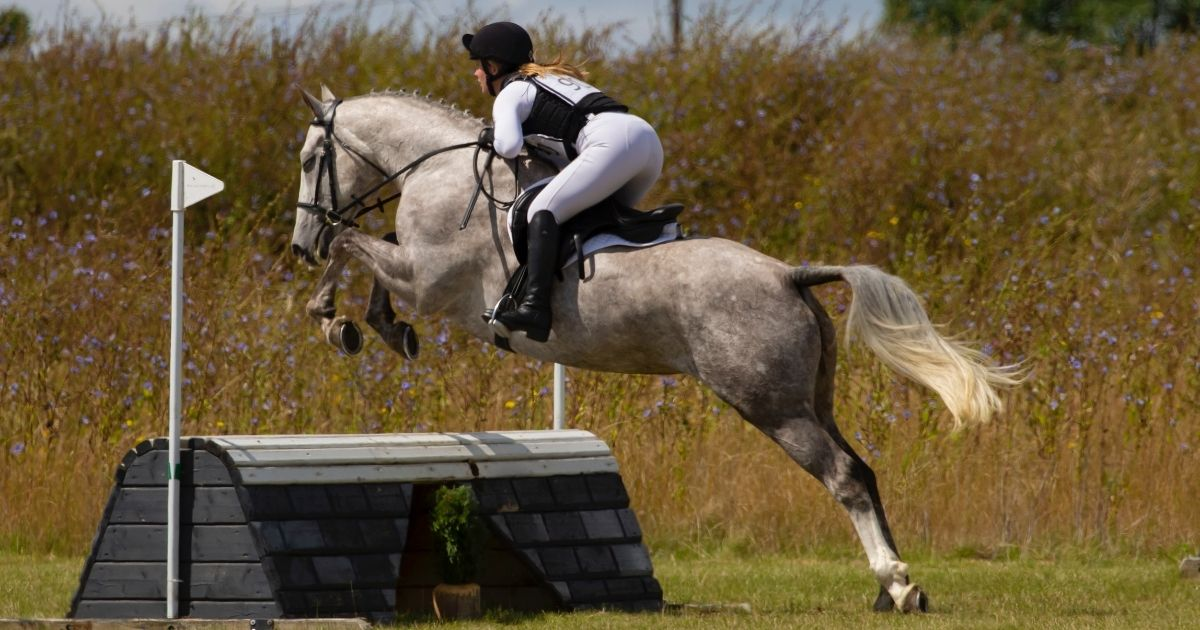 Equestrian Sports should be banned from the Olympics