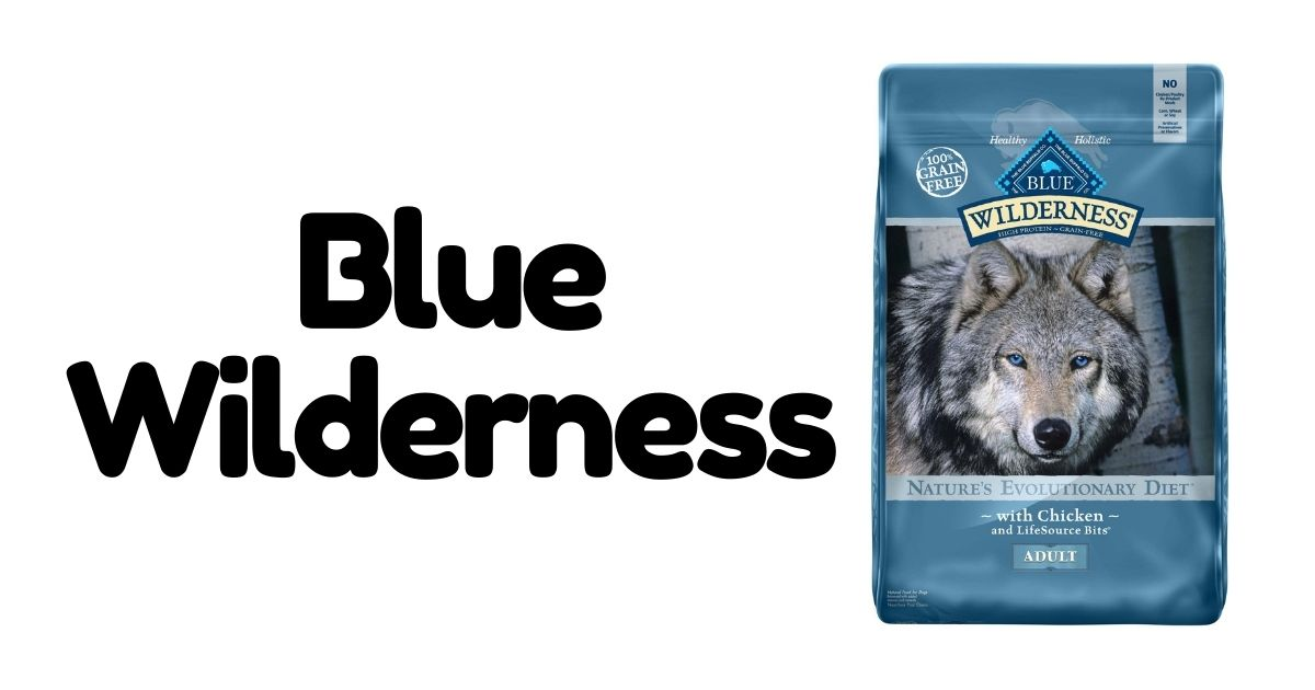 The five best dry puppy food for Large Breeds
